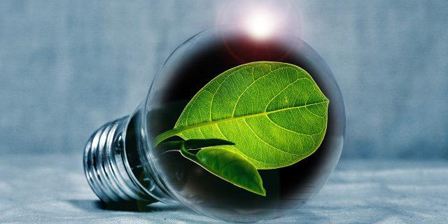 Lampadine a LED: il risparmio in bolletta