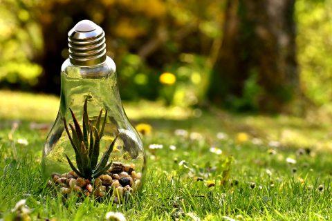 dove si buttano le lampadine esauste? - energiaeasy