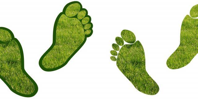 Carbon footprint: come le aziende possono ridurla